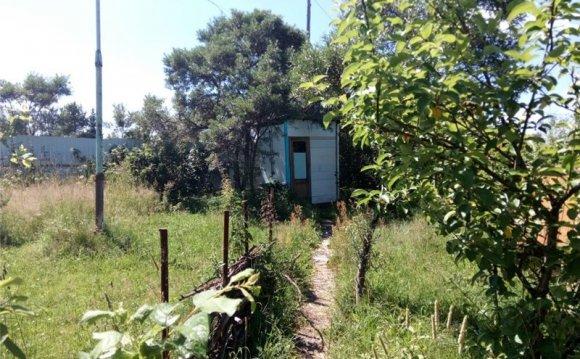 Косилка для травы ручная бензиновая отзывы - популярные записи