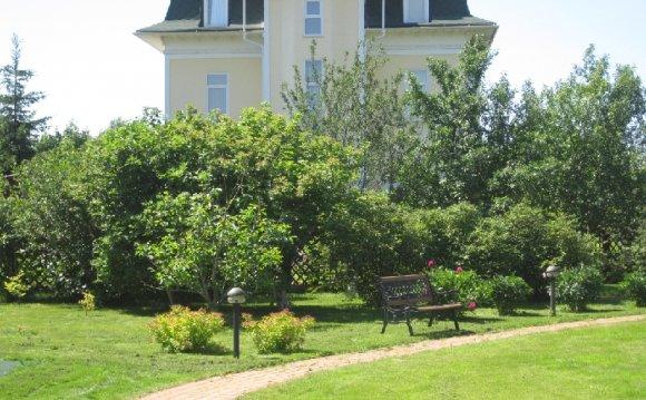 Стрижка газона | Озеленение посадка лечение деревьев ландшафтный