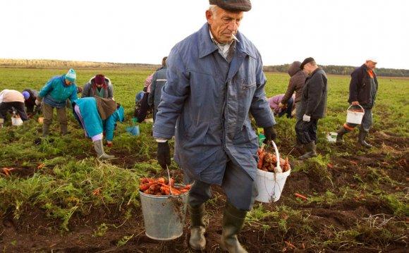 Труженики полей и огородов