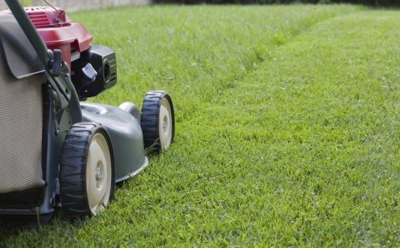 Жители ЮВАО активно высказывают мнение по правилам стрижки газонов